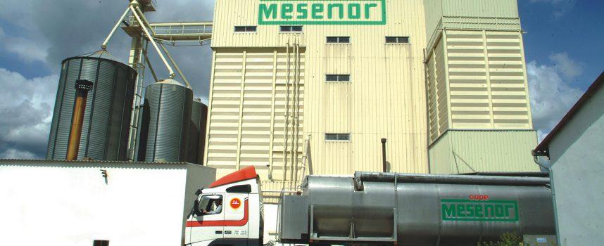 La Cooperativa Mesenor obtuvo un beneficio de 600.958 euros en el ejercicio 2013