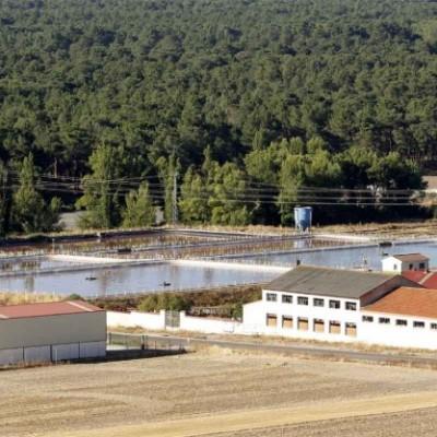 La Confederación Hidrográfica del Duero adjudica las obras de la EDAR de Cuéllar