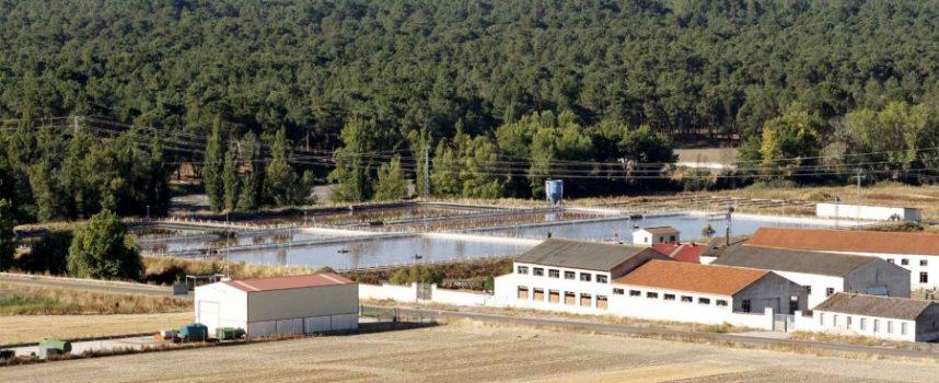El Ministerio de Agricultura licita por 8,7 millones de euros la mejora y ampliación de la EDAR de Cuéllar