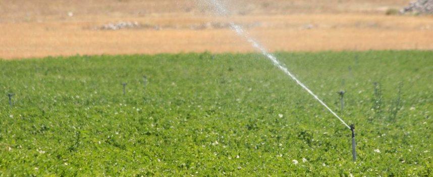 El PSOE exige a la consejera de Agricultura que solucione los problemas del campo en la comarca del Carracillo
