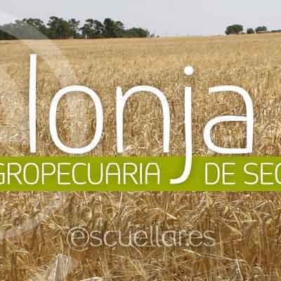 Lonja de Segovia