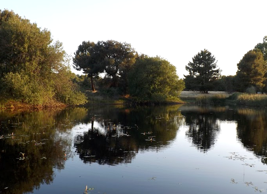 La I Ruta por la Naturaleza se pasea por los ecosistemas de Fuenterrebollo