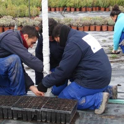 """Siete jóvenes iniciarán en noviembre el programa mixto de Formación y Empleo """"Jardines Ambientales Femur III"""""""