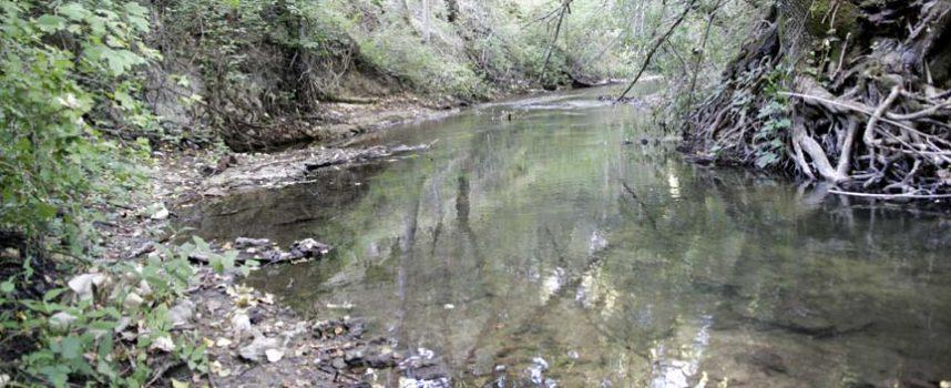`Cambio climático y rio Cega´ centran las actividades programadas por la Asociación El Espadañal