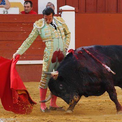Una placa de cerámica en la Plaza de Toros recordará a Orégano, el primer toro indultado en el coso cuellarano