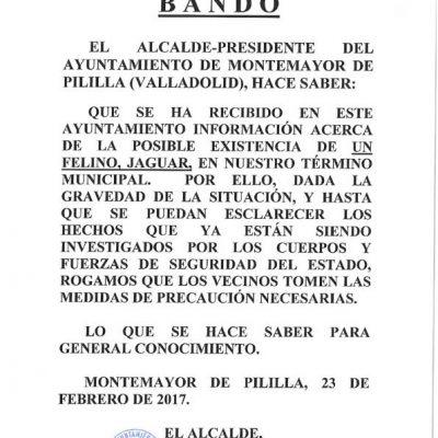 """El Ayuntamiento de Montemayor de Pililla advierte de la posible existencia de un """"felino jaguar"""" suelto en la zona"""