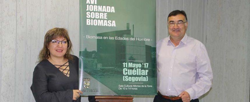 Las Jornadas de Biomasa abordarán su uso en grandes instalaciones de carácter religioso