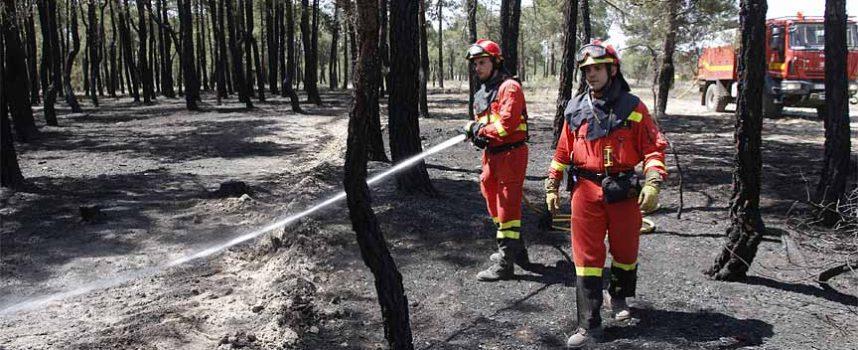 La Junta recuerda la prohibición de hacer fuego y usar maquinaria en el monte ante la época de peligro alto de incendios forestales