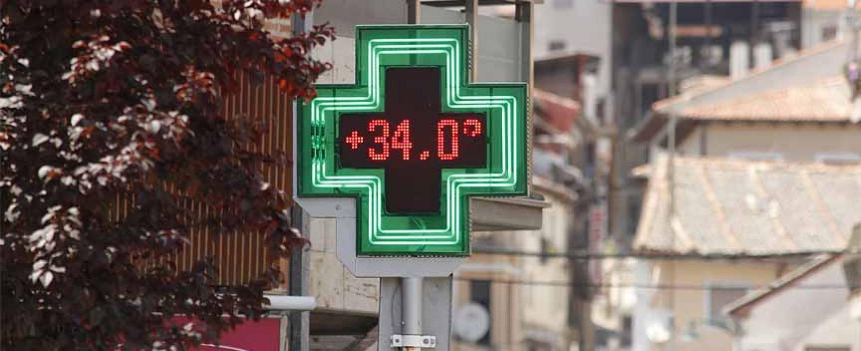 Las temperaturas volverán a subir hasta 37ºC en los próximos días