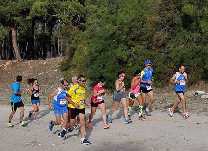 La Carrera Pedestre `Tierra de Pinares´ premiada como una de las mejores carreras de España por el portal Runmedia