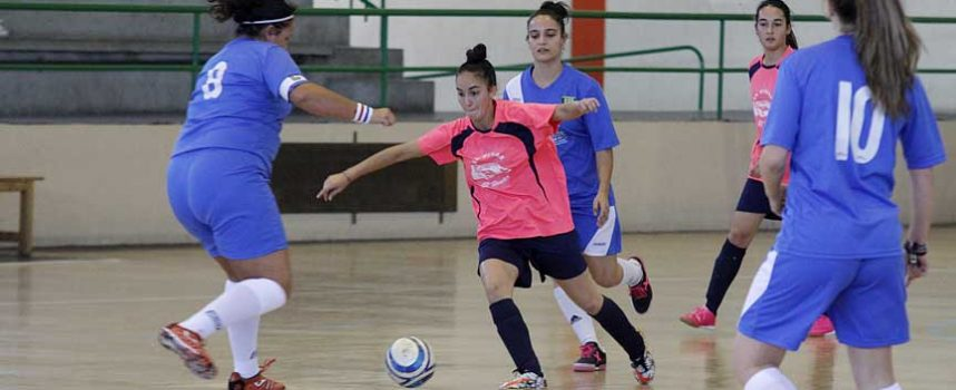 El FS Autoescuela El Pinar & El Henar alcanza la primera posición en la liga ASOFUSA
