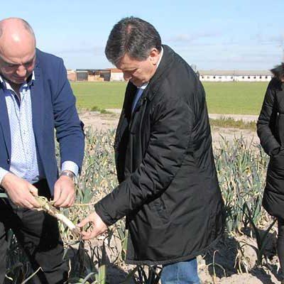 Diputación y Asoprofit renuevan el convenio para mantener la calidad de los cultivos hortícolas