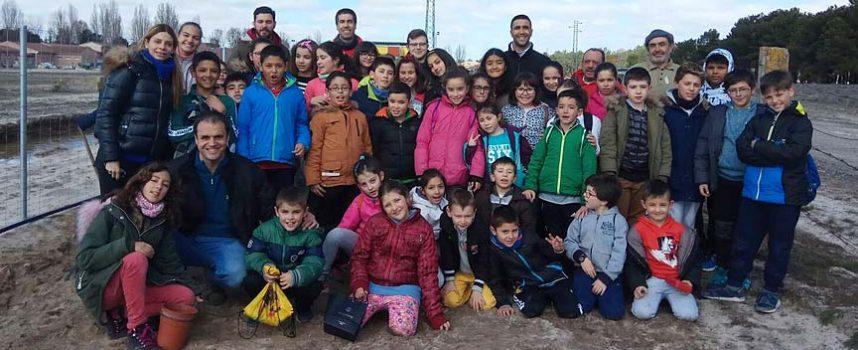 Los alumnos de Sanchonuño del CRA El Carracillo plantan árboles en la nueva vía peatonal