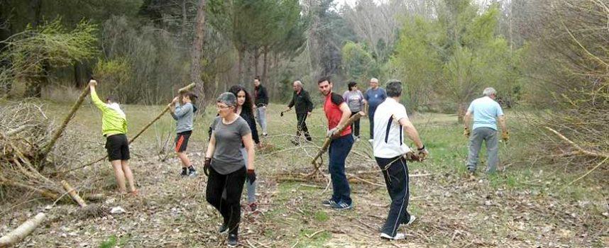 Aguilafuente realiza una jornada de limpieza forestal