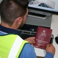 La Guardia Civil investiga en Navalmanzano a un hombre por el abandono de cinco caballos y otros cuatro delitos