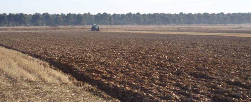 UCCL Segovia organiza en Cuéllar una jornada sobre gestión de suelo y aplicación eficiente de fitosanitarios
