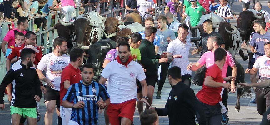 Los encierros de Interés Turístico Internacional y la ganadería de Saltillo, protagonistas de las XXV Jornadas de El Encierro
