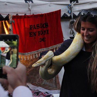 Combates y festejos medievales en la Huerta del Duque
