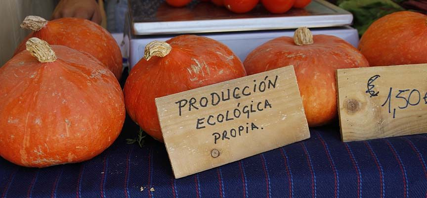 Jornada técnica sobre producción ecológica organizada por UCCL en Sanchonuño