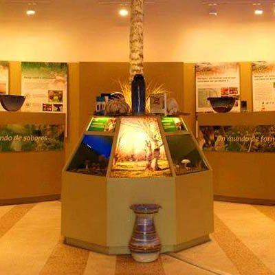 La Asociación El Cega de Mata de Cuéllar organiza una excursión al Museo Micológico de Rabanales (Zamora)