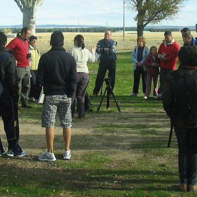 Honorse invita a iniciarse en la observación de aves en Las Lagunas de Cantalejo