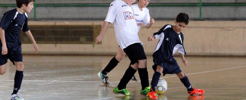 Abierto el plazo de inscripción en los módulos de las Escuelas Deportivas