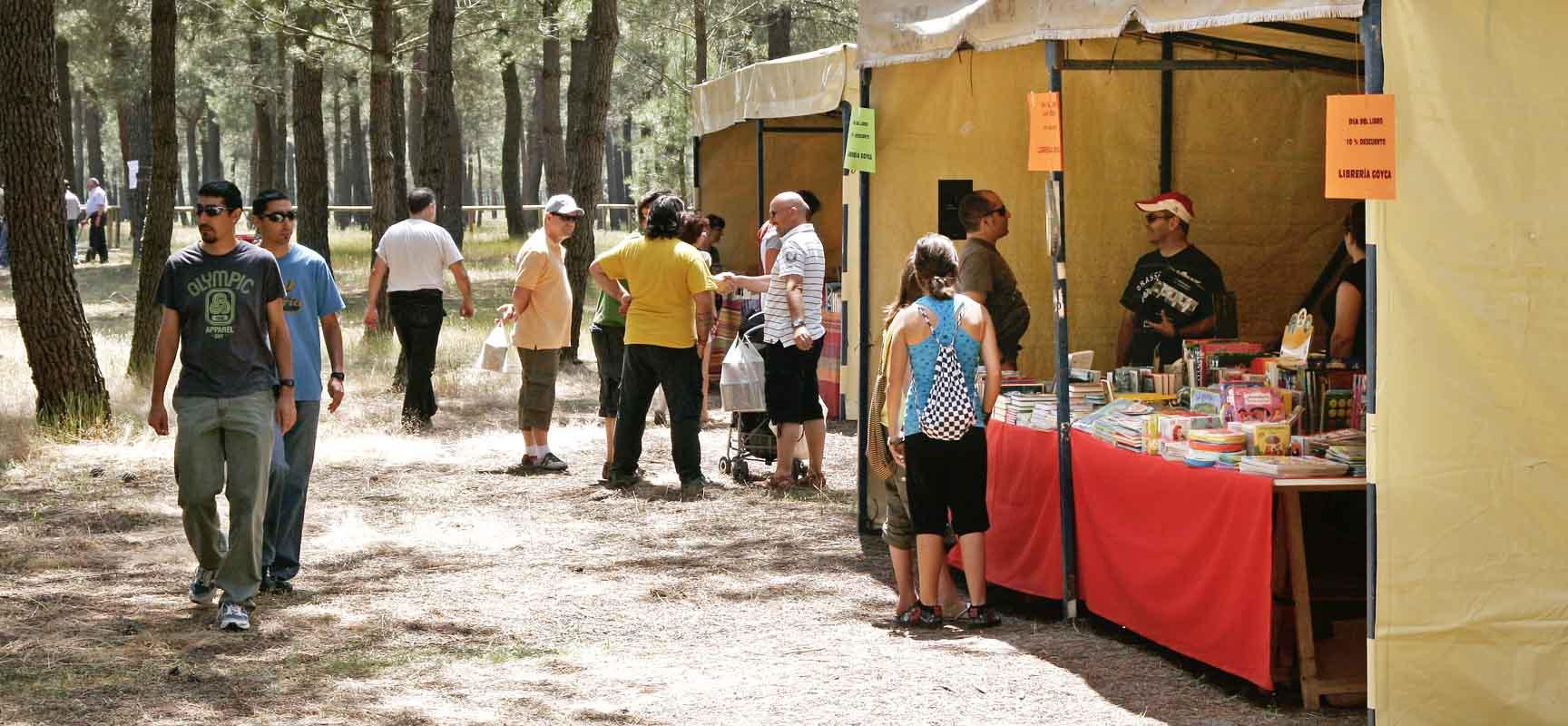 El Paraje de la Ermita de San Benito de Gallegos acogerá una nueva edición de la Feria del libro.