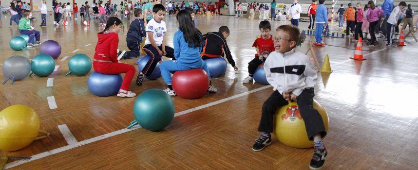Los alumnos de primaria del CEIP Santa Clara disfrutaron de la Fiesta del Kiwi