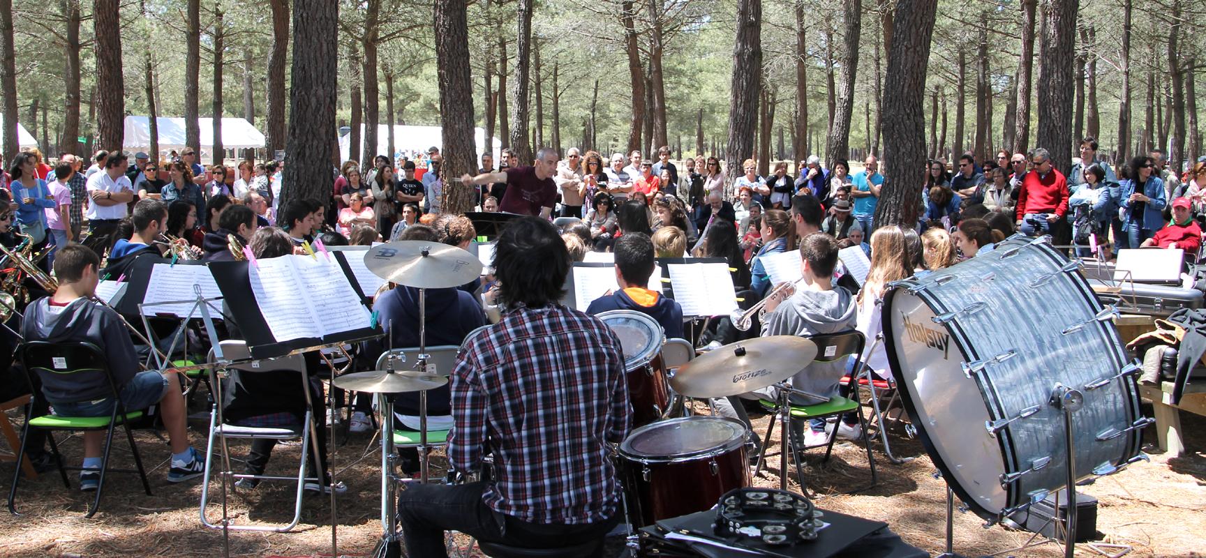 Un momento de la actuación de la Banda Ciudad de Alcobendas.