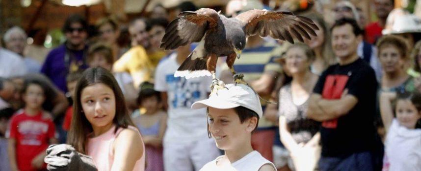 Abierto el plazo para participar en la Feria Medieval Mudéjar
