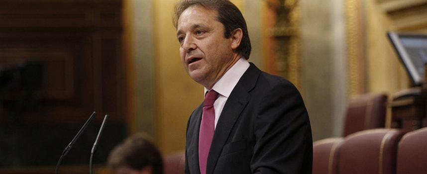 El PSOE pide la inclusión de los resineros en el Sistema Especial para Trabajadores de Cuenta Propia Agrarios