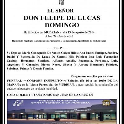 Felipe de Lucas Domingo