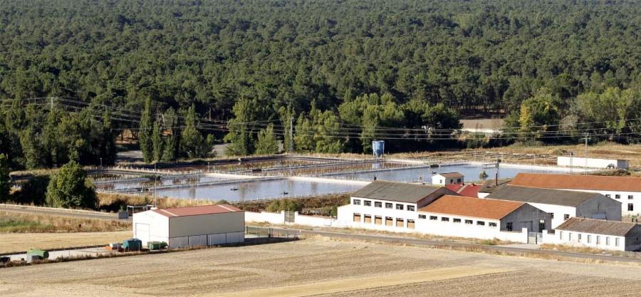 Vista general de las instalaciones de la EDAR de Cuéllar.
