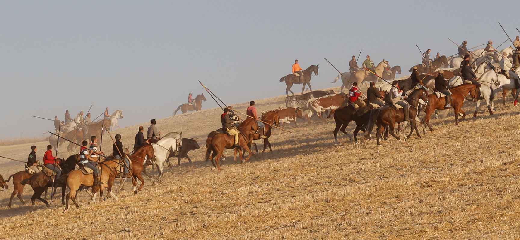 Caballistas conducen el ganado durante el encierro del lunes de 2013