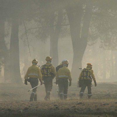 Controlado el incendio en Pinarejos en el que han ardido 26 hectáreas de masa forestal y arbolado