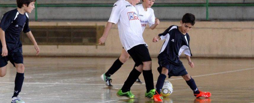 Las Escuelas Deportivas cuentan  en el curso 2014-2015 con 210 alumnos distribuídos en 14 módulos