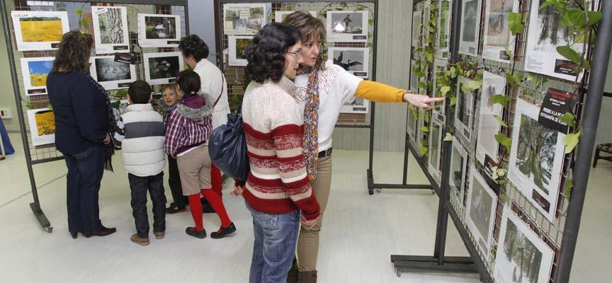 La sala Alfonsa de la Torre acogerá la exposición del 9 al 30 de mayo.