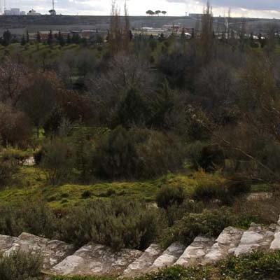 A primera hora de la mañana se hallaba el cuerpo de un joven en el parque de la Huerta del Duque