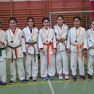 Escolares de la comarca participaron en la 1ª Concentración de Judo en San Ildefonso