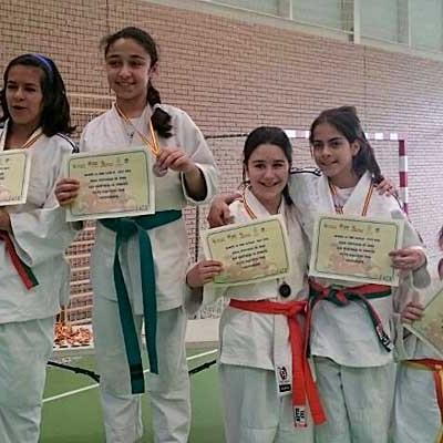 Buena posición para los participantes de la comarca en la final provincial de Judo