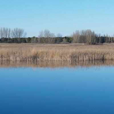 El Plan PIMA Adapta destina 700.000 euros a la restauración de la laguna de Lastras de Cuéllar y Hontalbilla