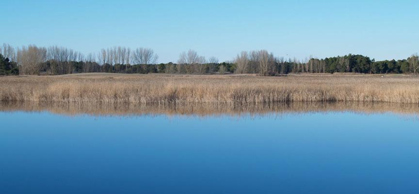 Lagunas de Lastras de Cuéllar.