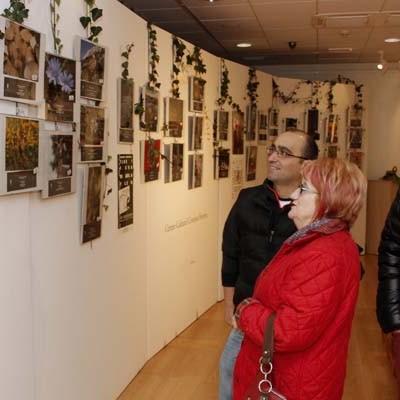 El certamen fotográfico de Flora y Fauna celebra su XXX aniversario con una exposición