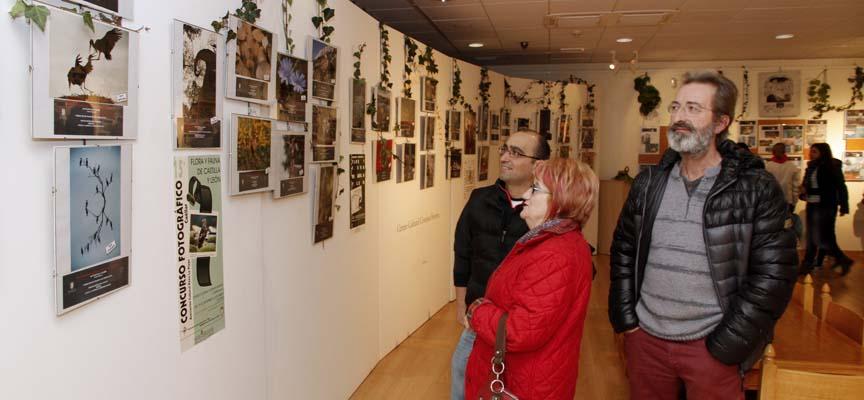 La exposición recoge las fotografías premiadas en las treinta ediciones del concurso de Flora y fauna de Castilla y León.
