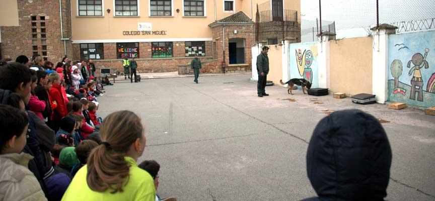 Exhibición del perro detector de drogas.