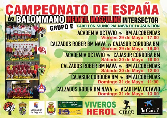 Cartel INTERSECTOR 2015