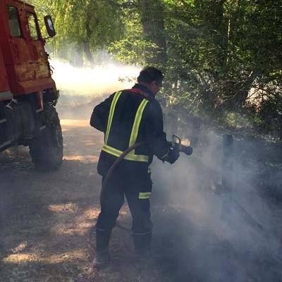 Operarios municipales y bomberos sofocan un incendio de las pelusas de la chopera de El Henar