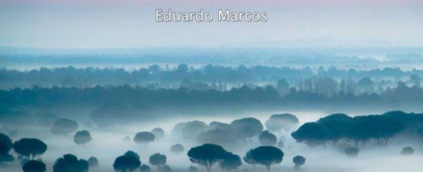 """El cuellarano Eduardo Marcos expone sus """"Paisajes con sentimiento"""" en Peñafiel"""