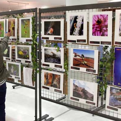 El sábado se entregarán los premios del certamen de Flora y Fauna de Castilla y León