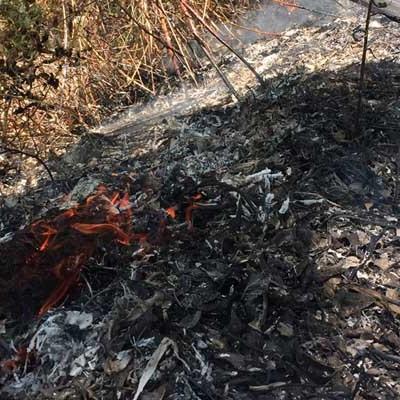 La Junta alerta del incremento de riesgo meteorológico de inicio y propagación de incendios forestales  mañana en la región
